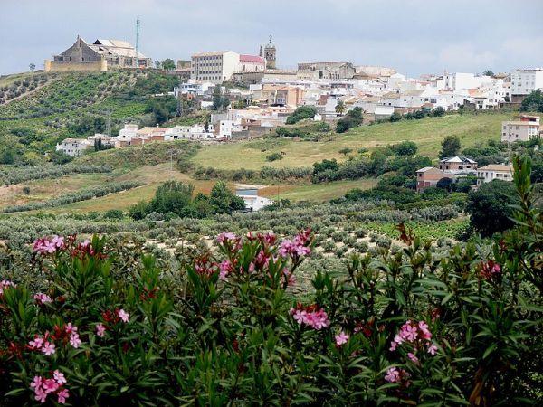 panoramica_montilla_cordoba