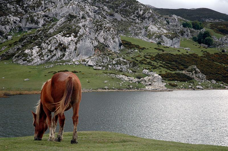 lago ercina covadonga - Covadonga: el inicio de la Reconquista