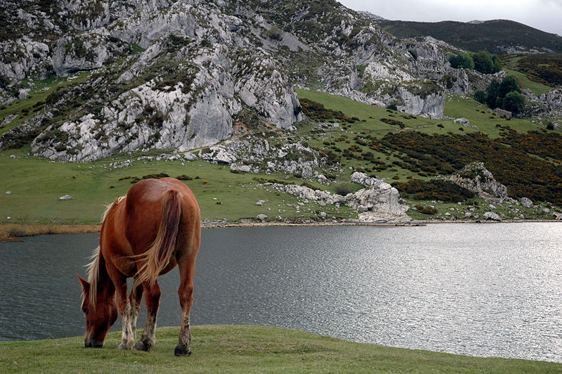 lago-ercina-asturias-lugares-historia
